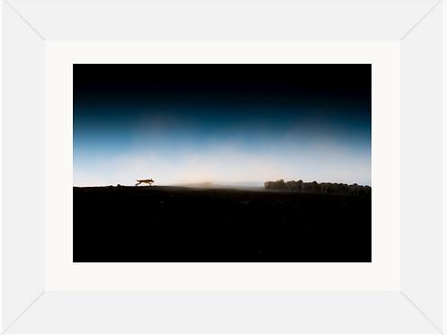 Dawn Muster Framed Print 23x16 (A2)