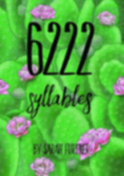 Sarah Furtner 6222 ebook coverNEW_edited.jpg