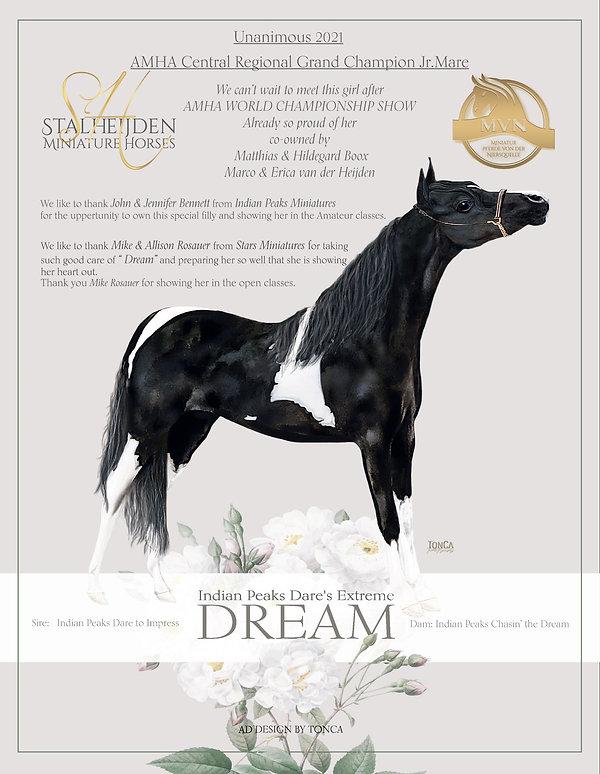 FB en WS Dream advert.jpg