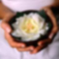 About Yoga | AuraFitness | Taos