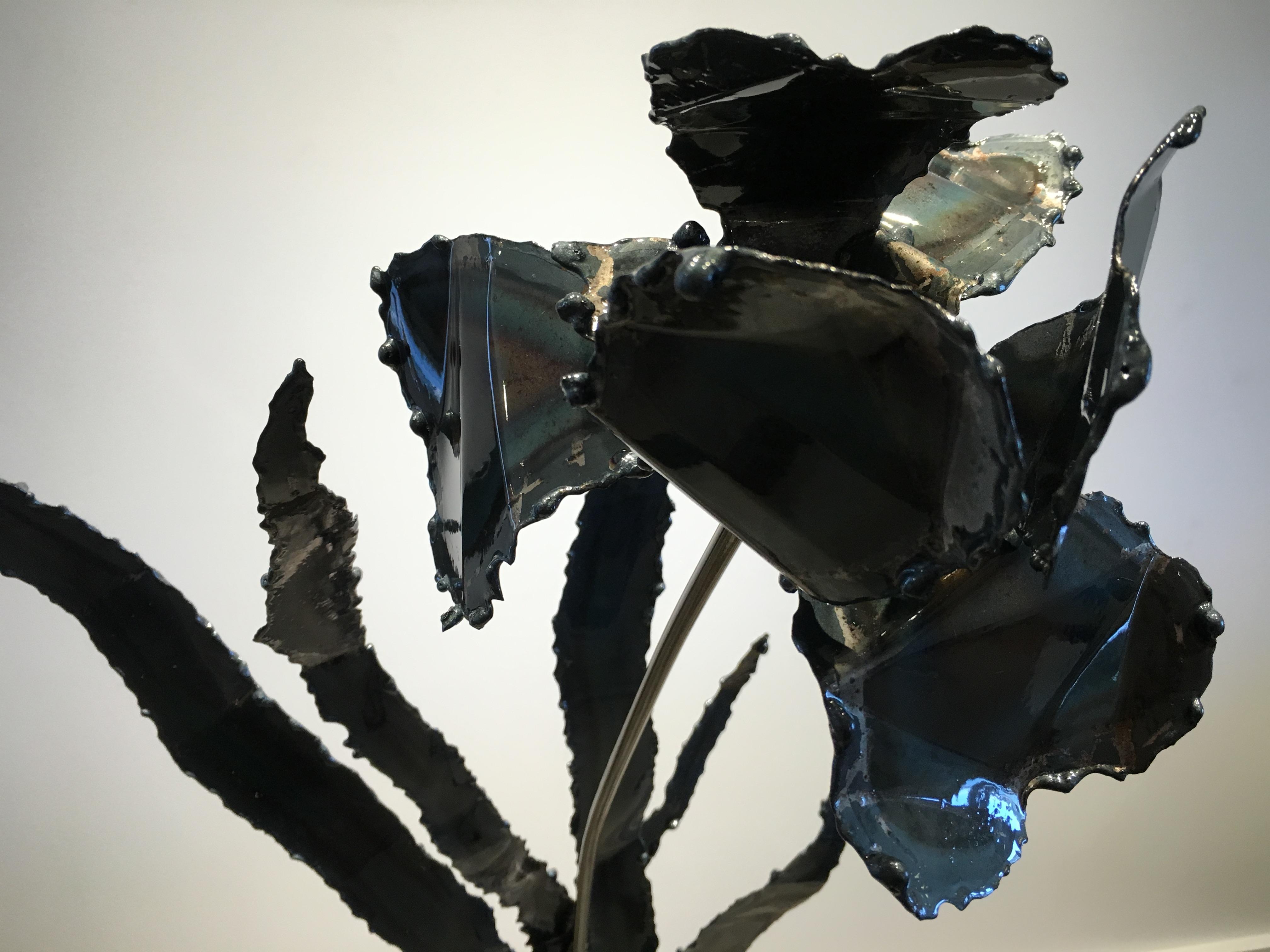 Black Iris Detail