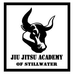 Jiu Jitsu Academy of Stillwater