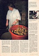 91' hvor peberroden gror 2 kopi.jpg
