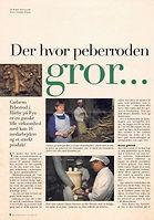 91' hvor peberroden gror kopi.jpg