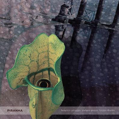 piranha_cover_web_1440x1440.jpg