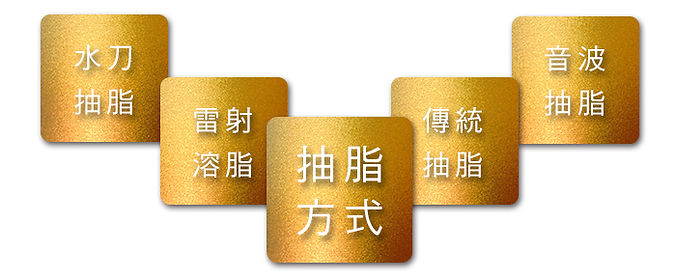 banner01(8).jpg