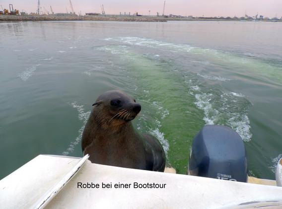 Robbe Boot_beschriftet.jpg
