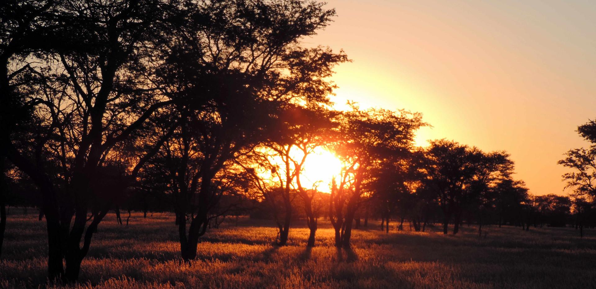 Sonnenuntergang8_beschriftet.jpg