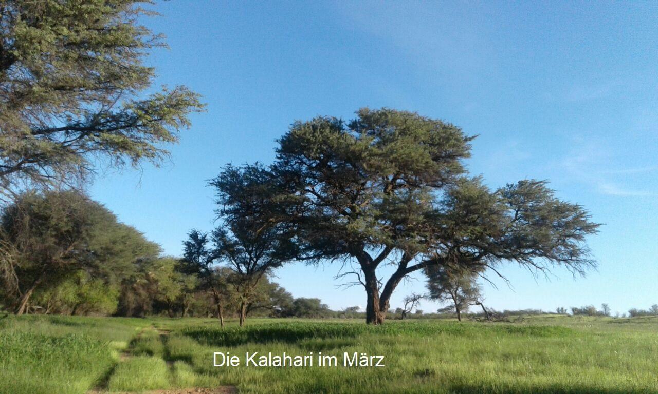 Kalahari_März_beschriftet.jpg