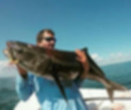 Sports Fishing Charters | North Carolina Outer Banks
