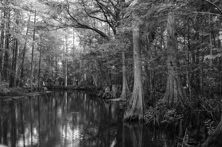 Florida21-2SM.jpg