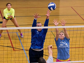 members playing volleyball.jpg