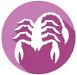 8Segni-zodiacali-scorpione.jpg