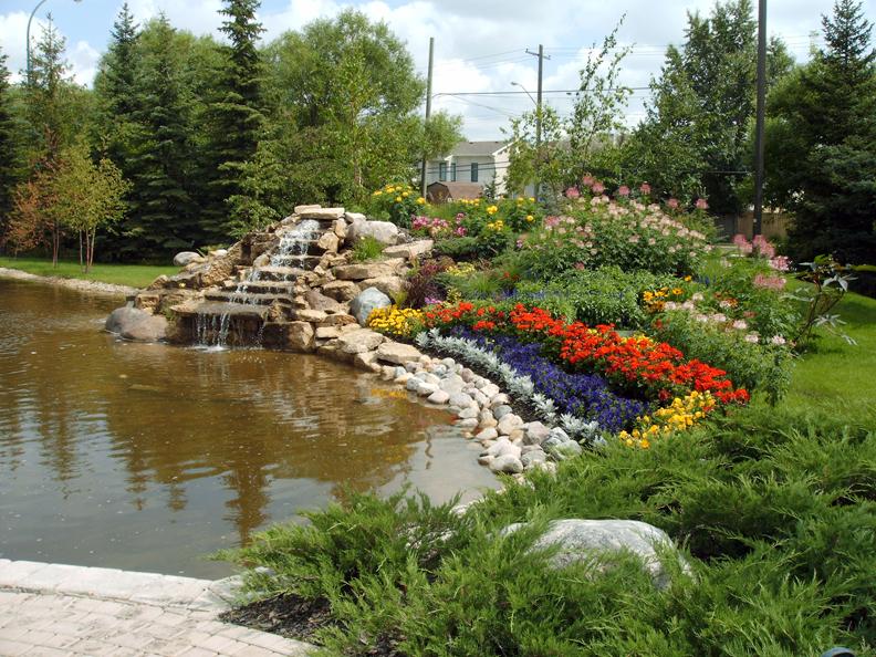 Flower Pond