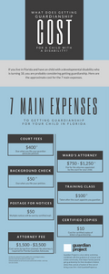 what does getting guardianship cost infographic