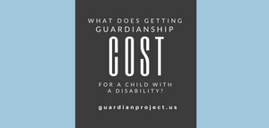 what does getting guardianship cost