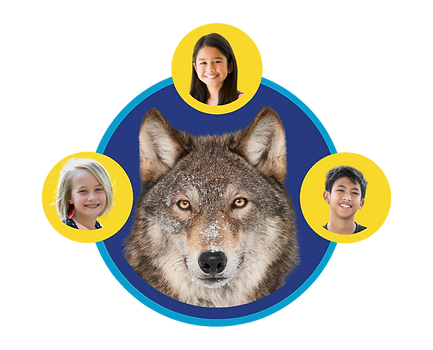 Wolf Pod.png