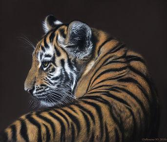 Тигр (50х40 см. 2018 г.).jpg