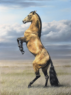 Ветер свободы