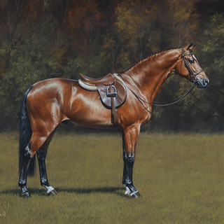 Chestnut horse 50x60 2018.jpg