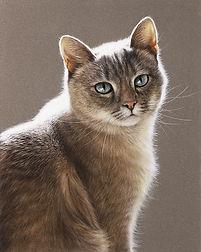 Кошечка.jpg