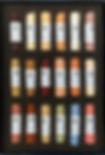 lisa-ober-18-front-web-682x1024_edited.j