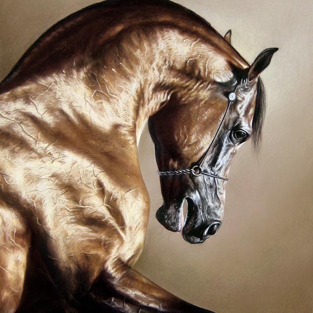 Arabian gold 40x50 2010.jpg