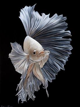 Рыбка 1.jpg