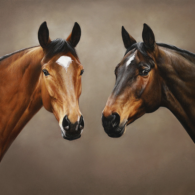 Два коня.jpg