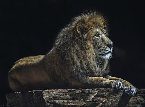 Король лев (50х65 см. 2018 г.).jpg