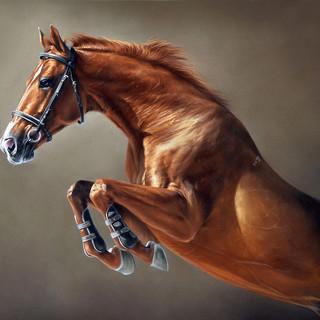 Red horse 30x50 2018.jpg