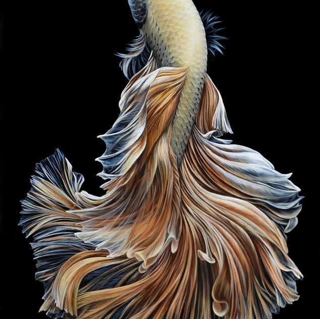 Золотая рыбка 30х45 см. 2017 г.jpg