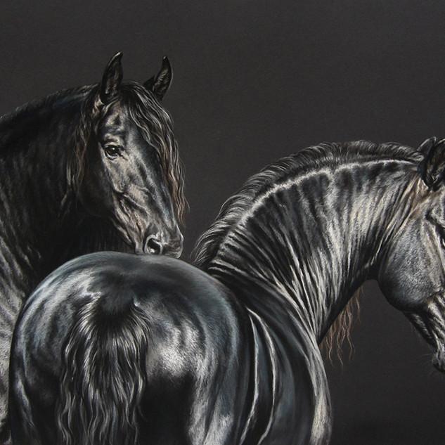 fresian horses 50x65 2009.jpg