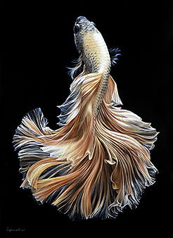 рыба2.jpg