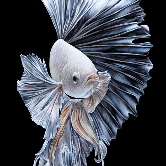 Серебристая рыбка 35х55 2017 см.jpg