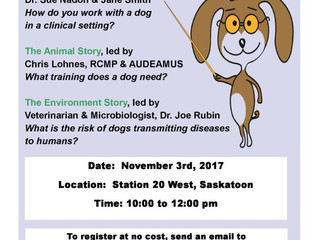 Zoonotic Risks and Therapy Dogs