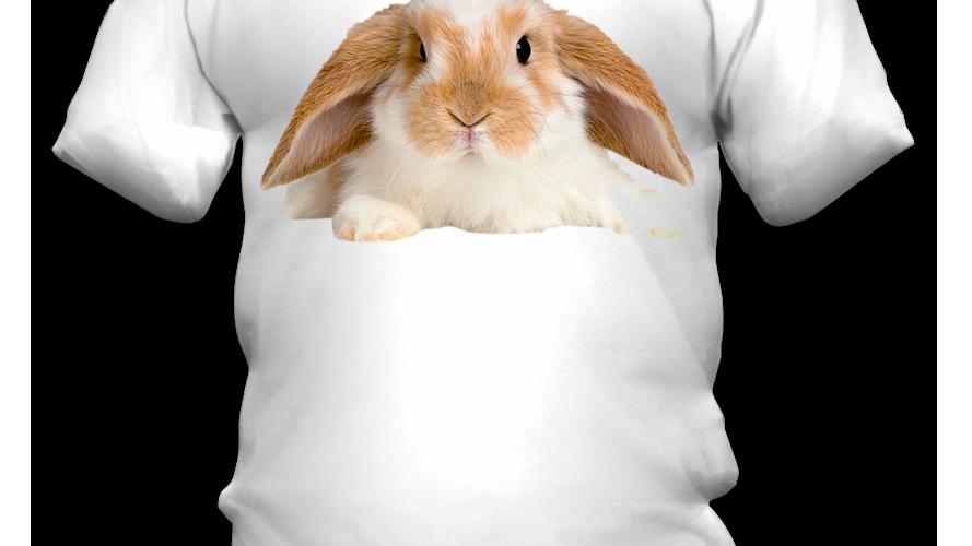 Camiseta Coelho