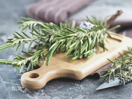 10 benefícios do alecrim para a saúde