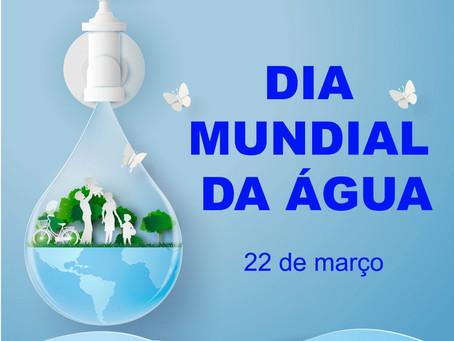 Importância da água para os seres humanos