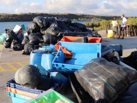 Ambientalistas retiram 4,6 toneladas de lixo das ilhas Galápagos