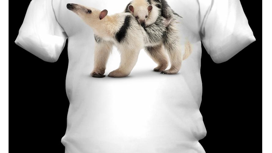 Camiseta Tamanduá