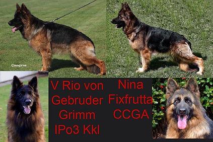 RIO AND NINA.JPG