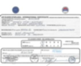 ORNA HIP-ELBOW INTERNATIONAL CERTIFICATE