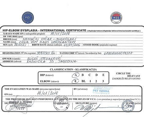 ORNA HIP-ELBOW INTERNATIONAL CERTIFICATE