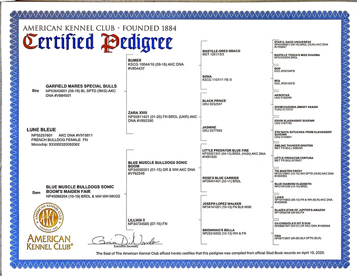 Certified%20Pedigree%20Lune%20Bleue_edit
