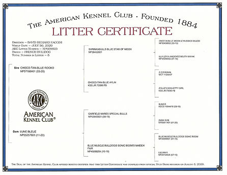 SNICKERS AND LUNAS LITTER CERTIFICATE.jp
