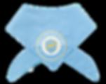 BLUE%20BANDANA_edited.png