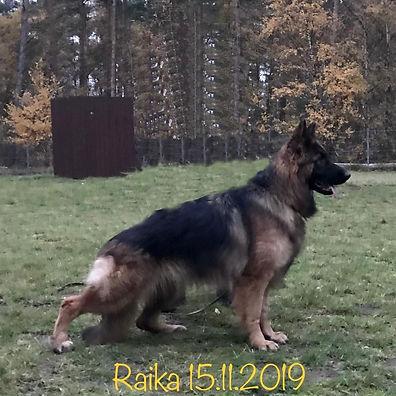 RAIKA 3_A.jpg