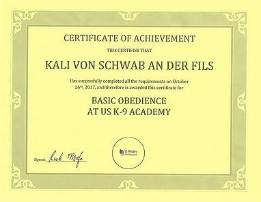 KALI BASIC OBEDIENCE CERTIFICATE.jpg
