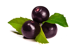 Bacche di Acai - Antiossidante - Ingrediente del RESERVE Jeunesse - JTeam Network